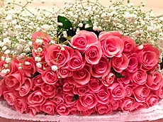 Beautiful_roses_20131117