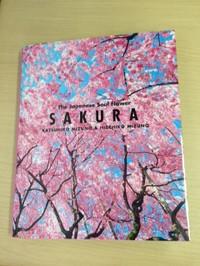 Sakura_photo